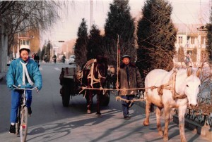 China Cart on Road