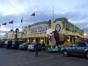 Big texan bilding-1