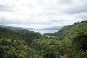 green-and-lake