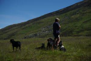 back-of-herder-at-station